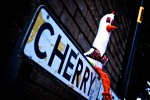 Cherry the Chicken Stripper